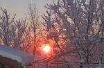 wintersBilm5